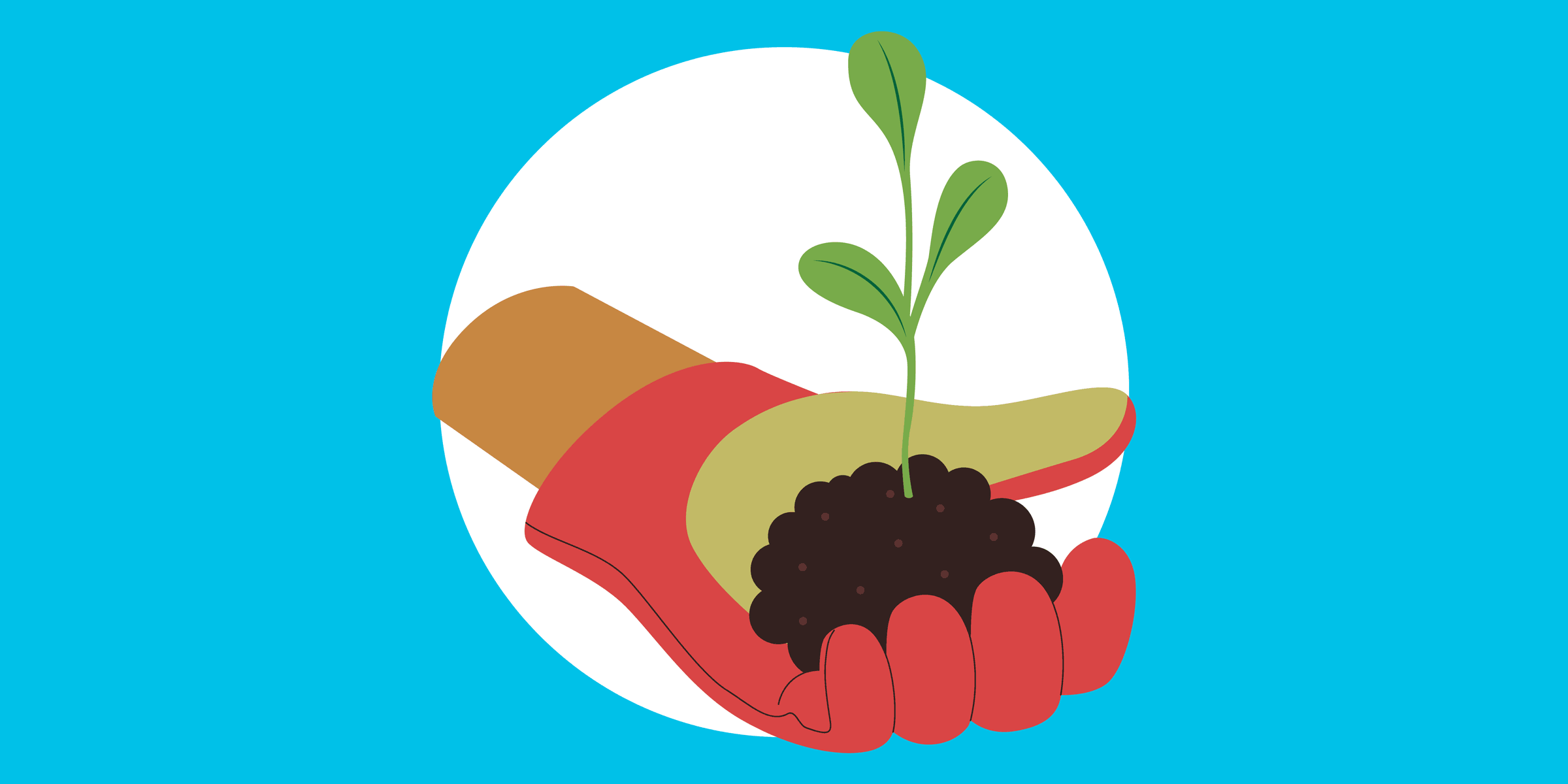 a person's hand in a gardening glove holding a seedling, symbolizing how a nonprofit utilizes quickbooks to empower youth through farming