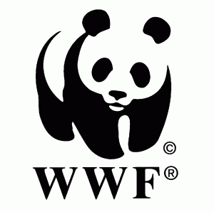 drawing of a panda with incomplete borders above the trademark WWF