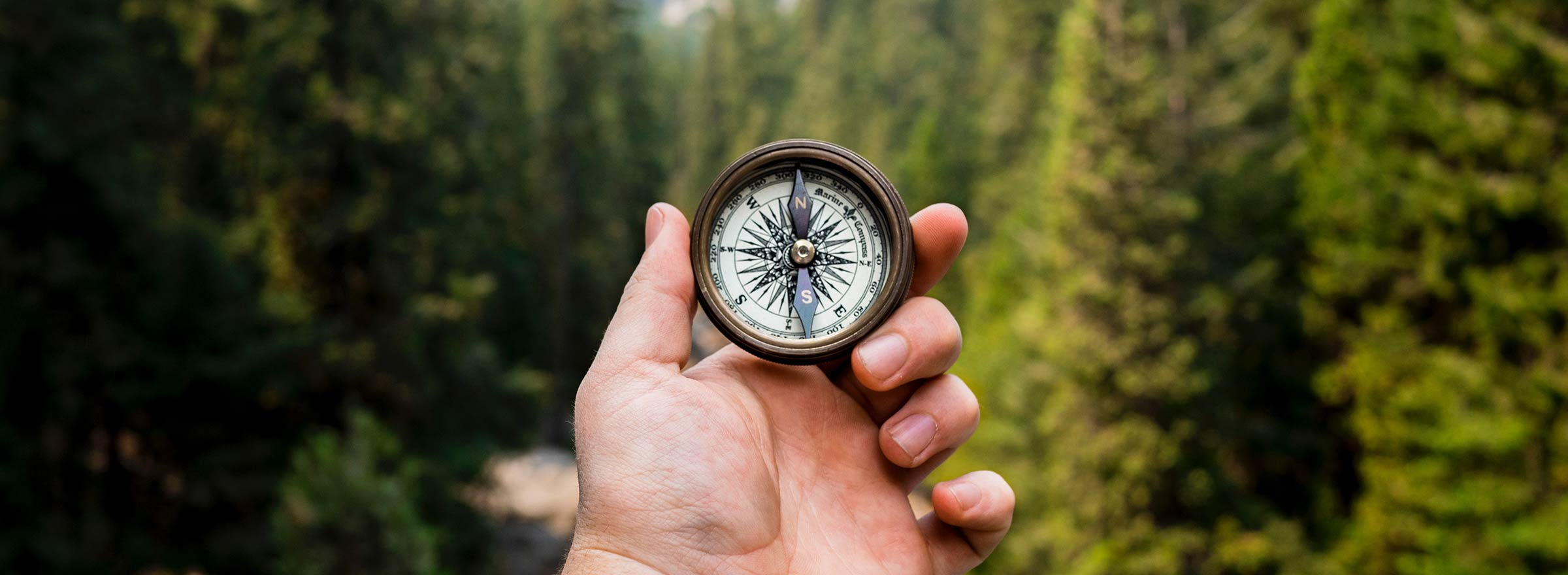 person in a forest holding a compass, representing what nonprofits can gain from TechSoup services