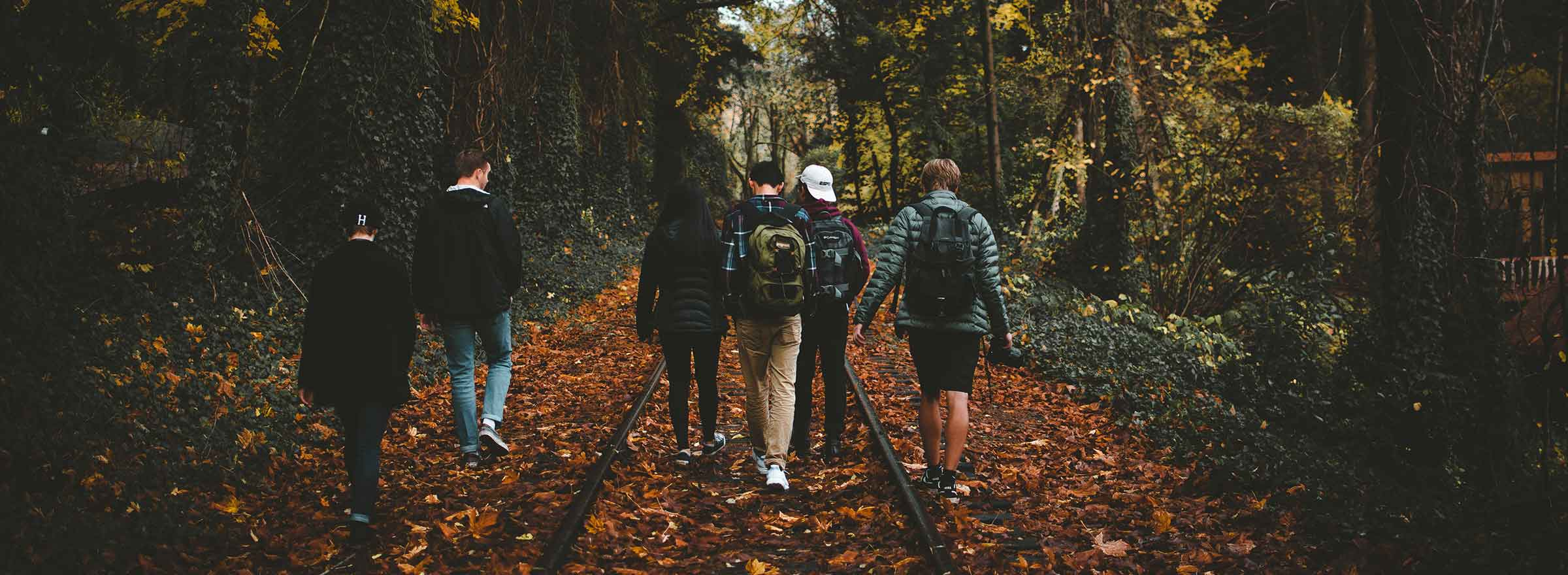 a group of young adults walking through the woods, representing how a nonprofit can harness the power of quickbooks to support vulnerable youth