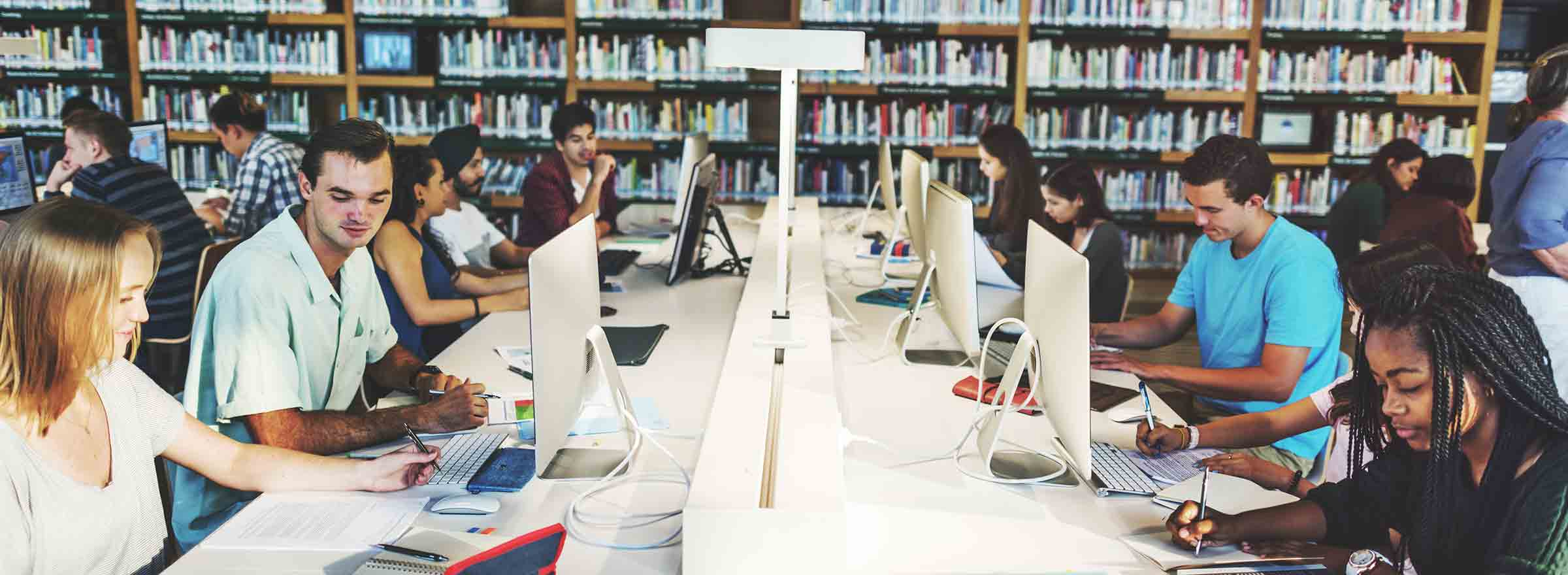 library patrons using computers