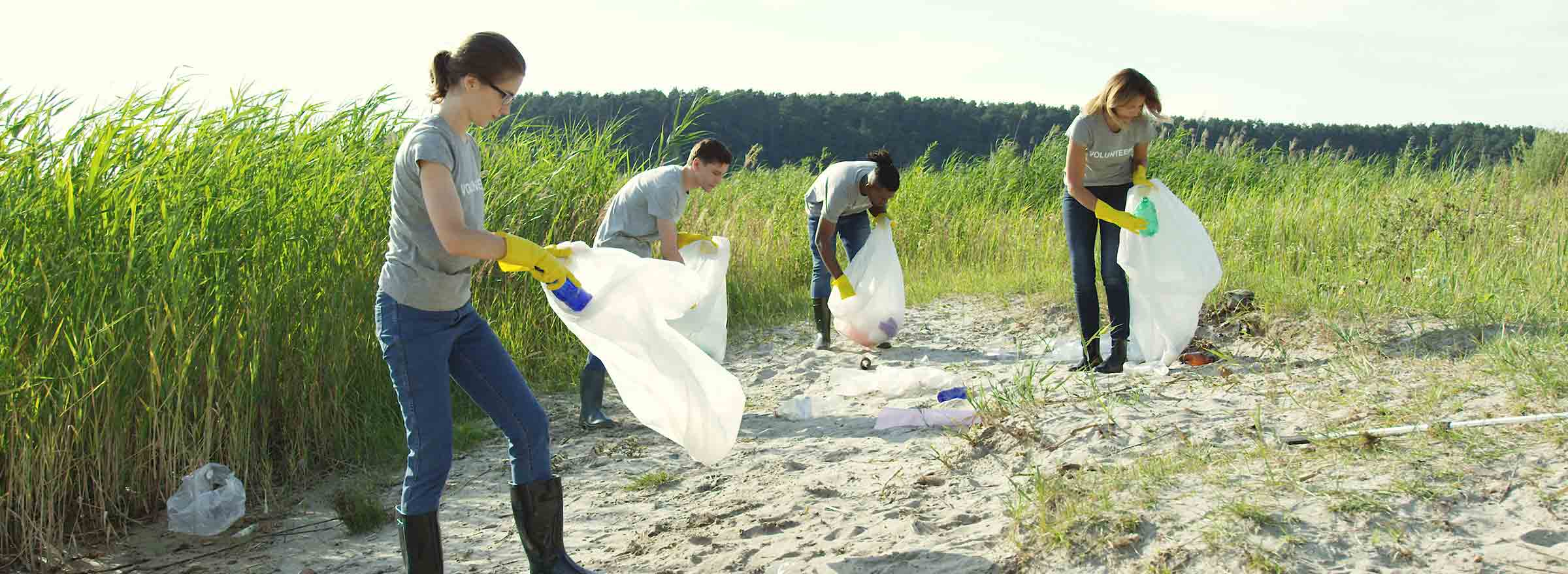 four people in volunteer tee shirts pick up trash in a natural area