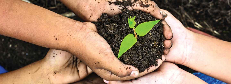 TechSoup's Environmental Work Around the World